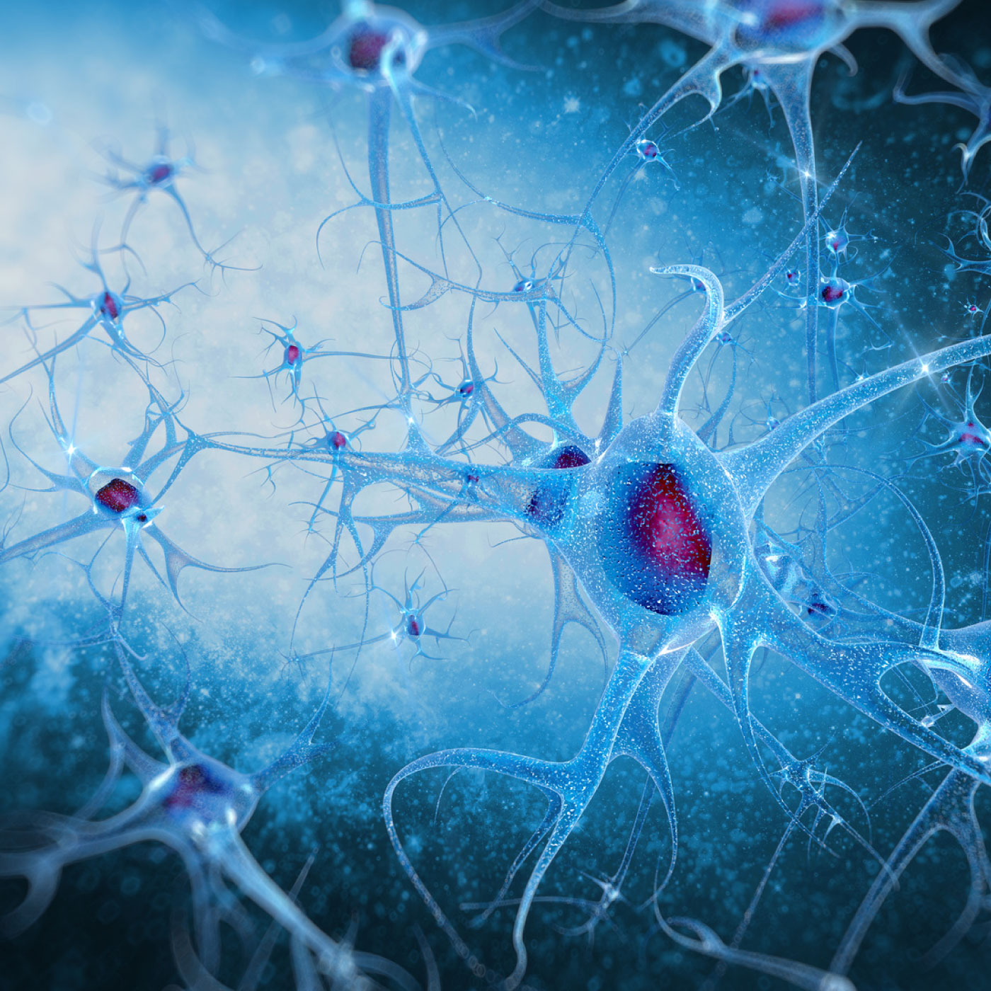 Understanding the Incredible Power of the Nervous System with Irene Lyon: Part 2